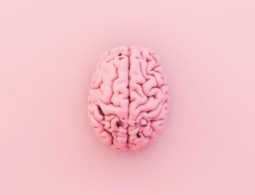 Cómo ayuda a la medicina la creación de cerebros con impresoras 3D